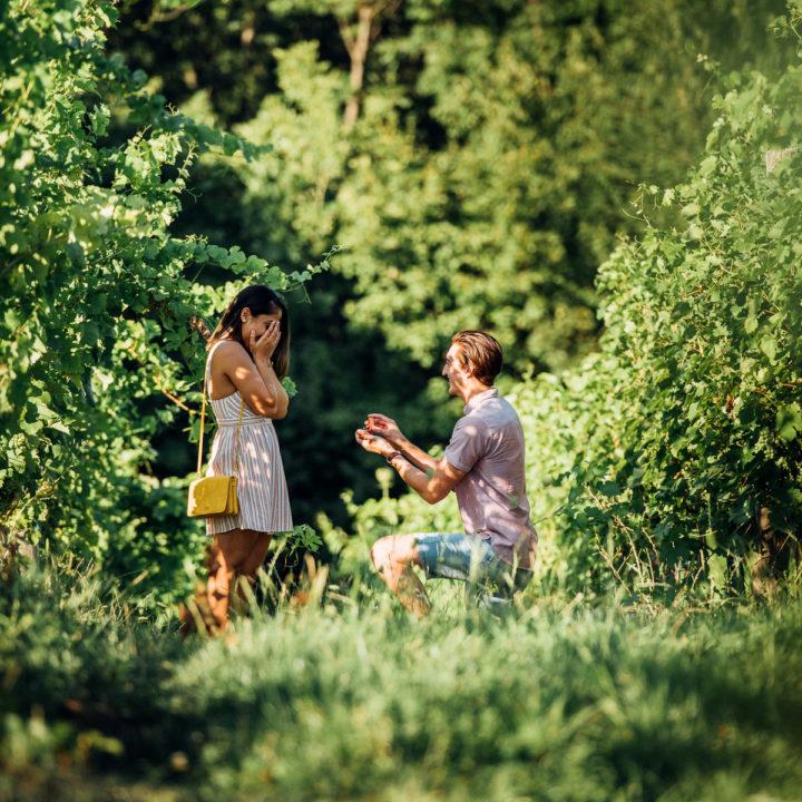 Wedding_Proposal_Vienna_Heiratsantrag_Wien_DanielWillingerPhotographie-9